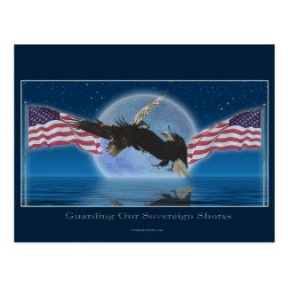 BALD EAGLE & US FLAG Patriot Series Postcard