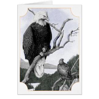 Bald Eagle Vintage Illustration Card