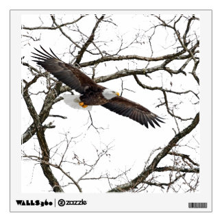 Bald Eagle Wall Decal