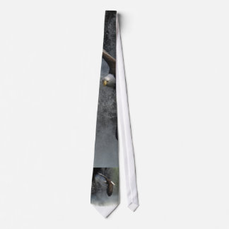 BALD EAGLE & WATER FALL Gift Tie
