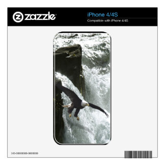 Bald Eagle & Waterfall 4 Wildlife iPhone 4 Skin