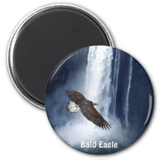 Bald Eagle & Waterfall Wildlife Nature Magnet