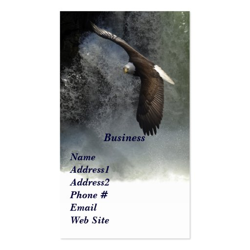 Bald Eagle & Waterfalls Business Cards