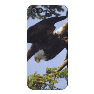 Bald Eagle Wildlife Supporter iPhone Case