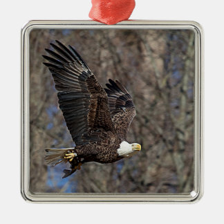 Bald Eagle with a Catfish Metal Ornament