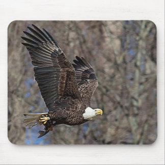 Bald Eagle with a Catfish Mouse Pad
