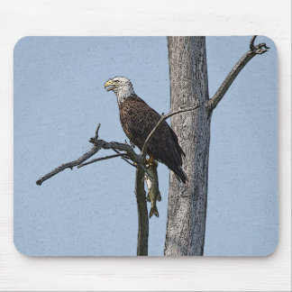 Bald Eagle with a fish Mouse Pad