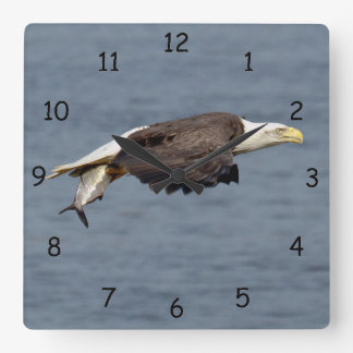 Bald Eagle with a fish Square Wall Clock