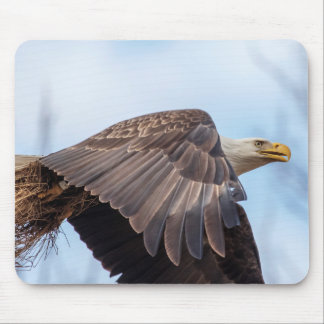 Bald Eagle with a wad of hay Mouse Pad