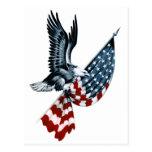 Bald Eagle with American Flag Postcard