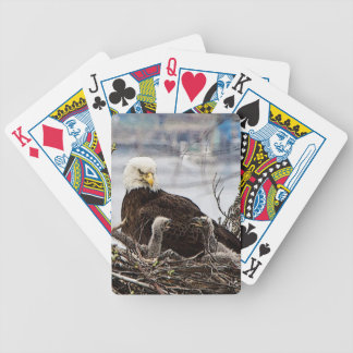 Bald Eagle with eaglets Bicycle Playing Cards