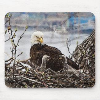 Bald Eagle with eaglets Mouse Pad