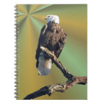 Bald Eagle with earth rays Spiral Notebook