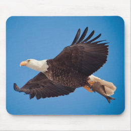 Bald Eagle With Fish Mouse Pad