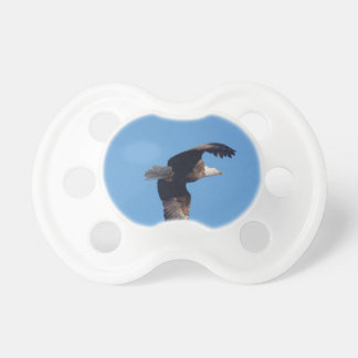 bald eagle with fish pacifier
