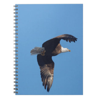 bald eagle with fish spiral notebook