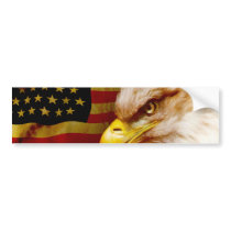 Bald eagle with flag bumper sticker