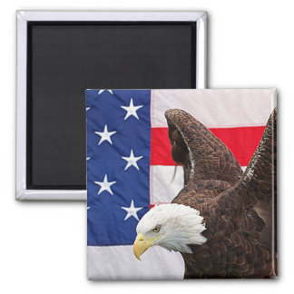 Bald Eagle with the American Flag Magnet