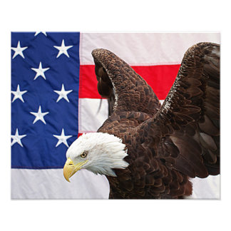 Bald Eagle with the American Flag Photo Print