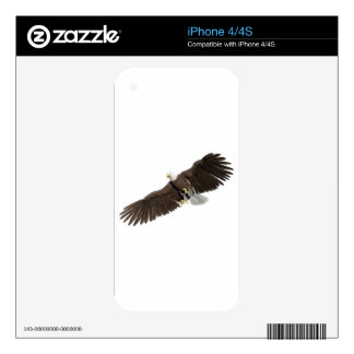 Bald Eagle with wings on down stroke iPhone 4 Decal