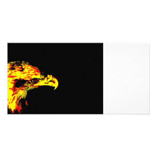 bald eagle yellow graphic black back photo card