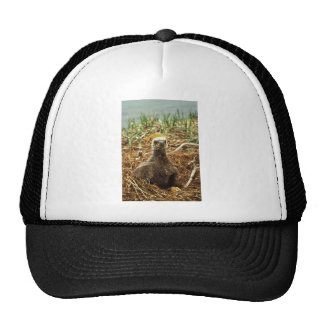 Bald Eagle Young in Nest Mesh Hat