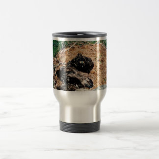 Bald Eagle Young in Nest Coffee Mugs