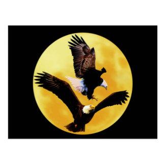 Bald eagles and full moon postcard