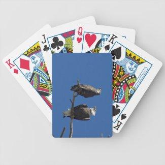 Bald Eagles Bicycle Card Decks