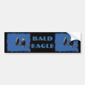 Bald Eagles Bumper Sticker