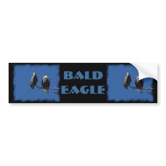 Bald Eagles Bumper Stickers