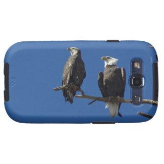 Bald Eagles Galaxy SIII Cases