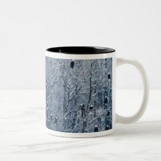 Bald Eagles (Haliaeetus leucocephalus) at the Two-Tone Coffee Mug