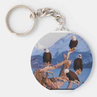 Bald Eagles Homer Alaska Keychain