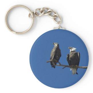 Bald Eagles Key Chain