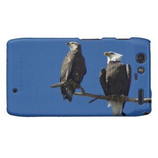 Bald Eagles Motorola Droid RAZR Covers