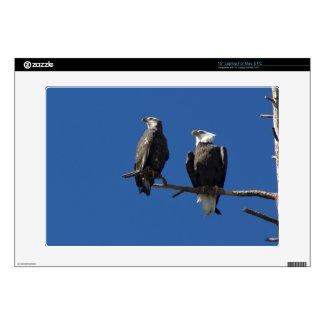 Bald Eagles Skin For Laptop