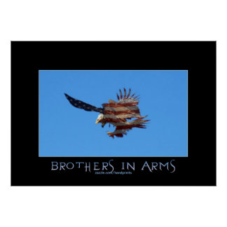 Bald Eagles USA Patriotic Military Art Poster