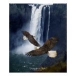 Bald Eagles & Waterfall Wildlife Art Poster
