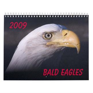 Bald Eagles Calendar