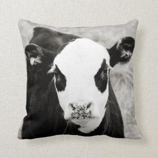 Bald Faced Calf Square Pillow