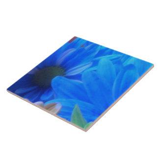 Baldosa cerámica - centro superior - grupo l de la azulejo cuadrado grande