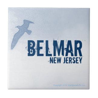 Baldosa cerámica de BELMAR NEW JERSEY NJ Azulejo Cerámica