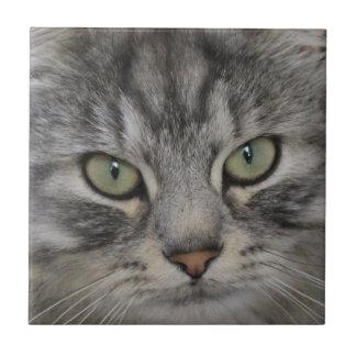 Baldosa cerámica de la cara de plata del gato azulejo cuadrado pequeño