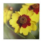 Baldosa cerámica de la flor bonita