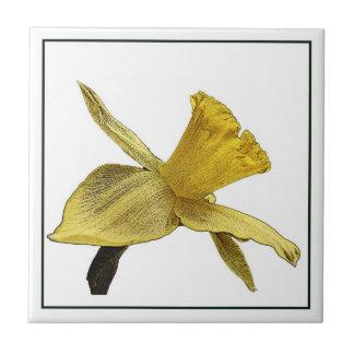 Baldosa cerámica de la foto amarilla del narciso teja  ceramica