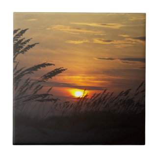Baldosa cerámica de la puesta del sol de la hierba azulejos cerámicos