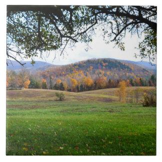 Baldosa cerámica de las colinas de Vermont Azulejo Cuadrado Grande