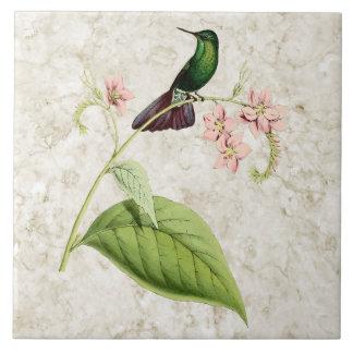 Baldosa cerámica del colibrí de la cola del metal  azulejo cuadrado grande