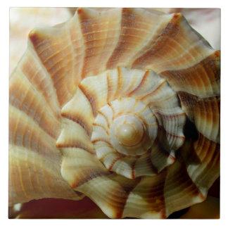 Baldosa cerámica del cuadrado del bucino del relám azulejo cuadrado grande